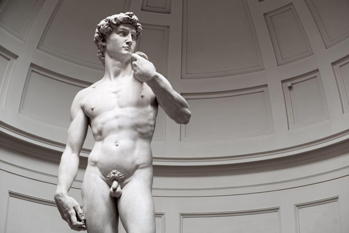 David, according to the interpretation of the Italian artist Michelangelo.