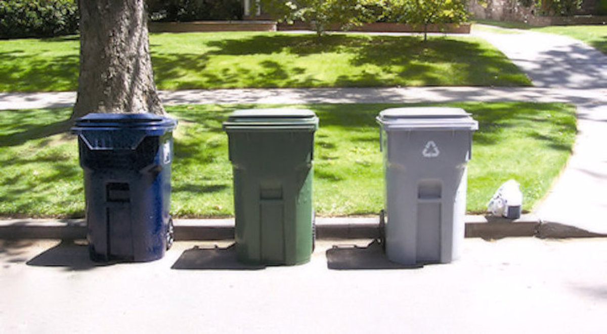Which of these trash cans hold the prize?