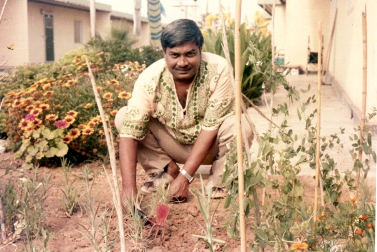 Pic7: Dad Gardening Happily