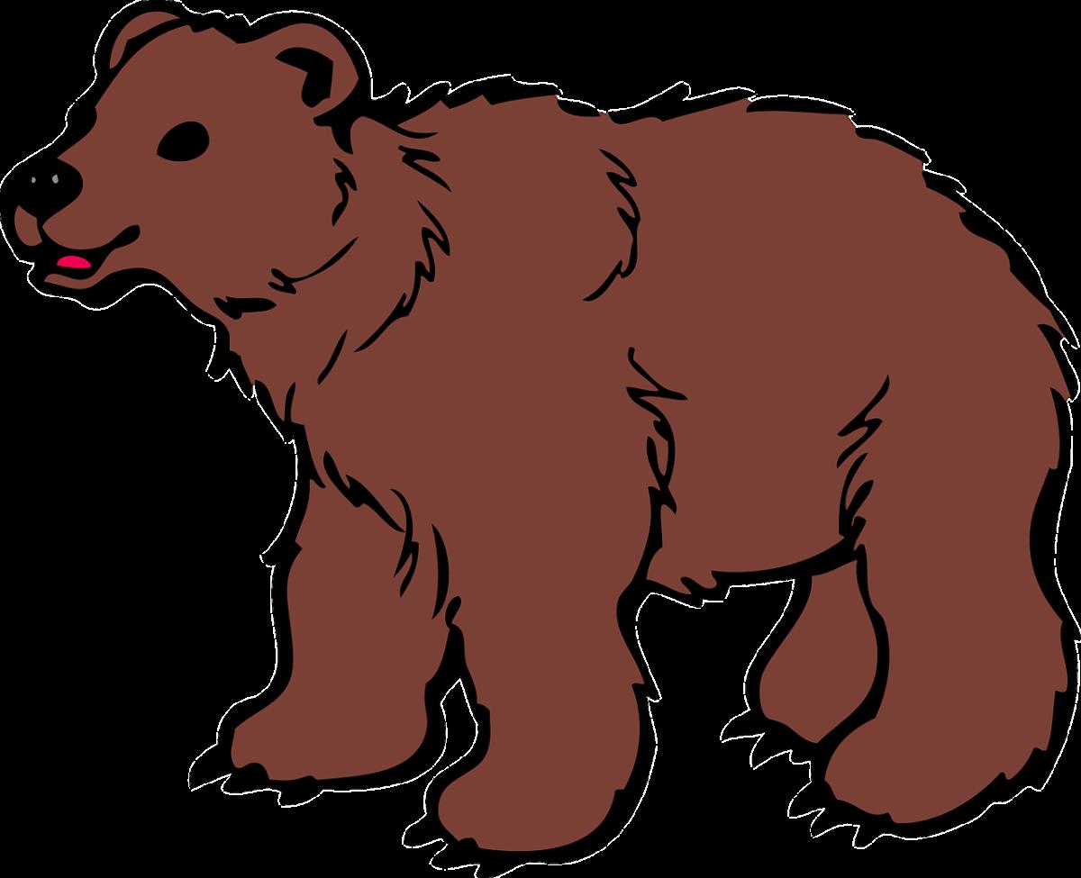 Arnold, the Bear