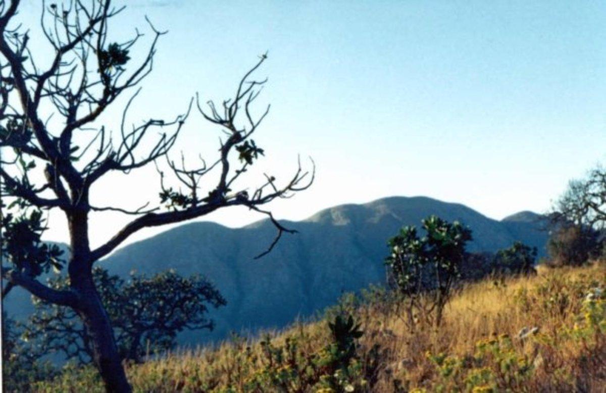 Mamotswiri (Mother of mists)