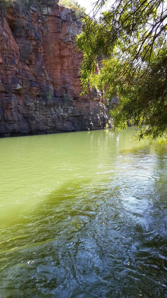 Deep cool pools where the river bends