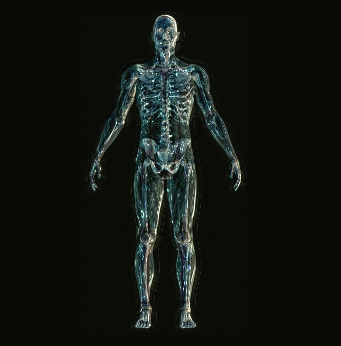 Indian skeleton