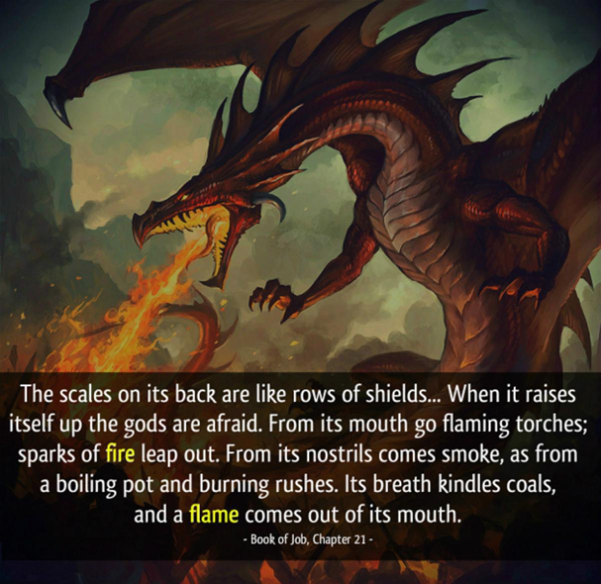 """dragons may be the """"leviathans"""" of Job"""