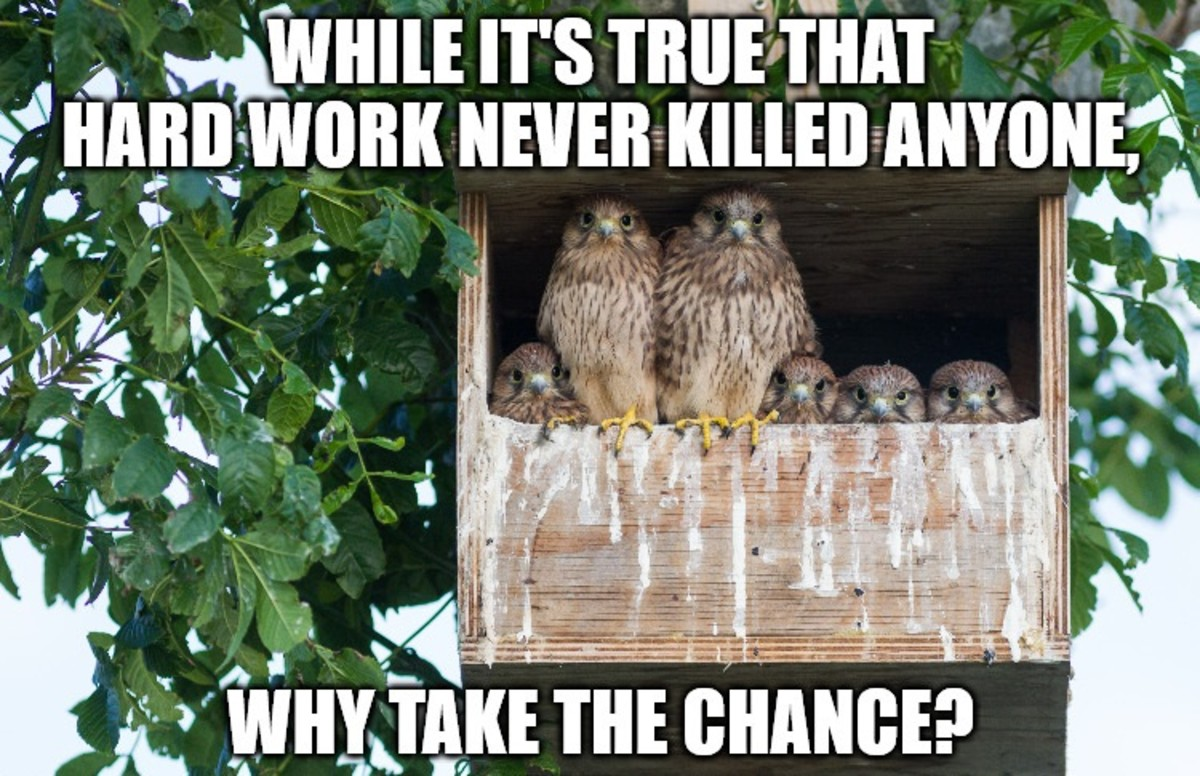 While it's true that hard work never killed anyone, why take the chance?