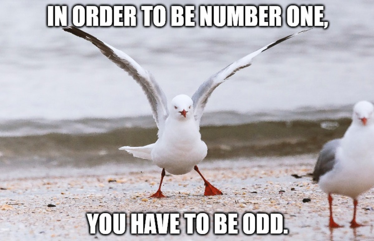 In order to be number one, you have to be odd.