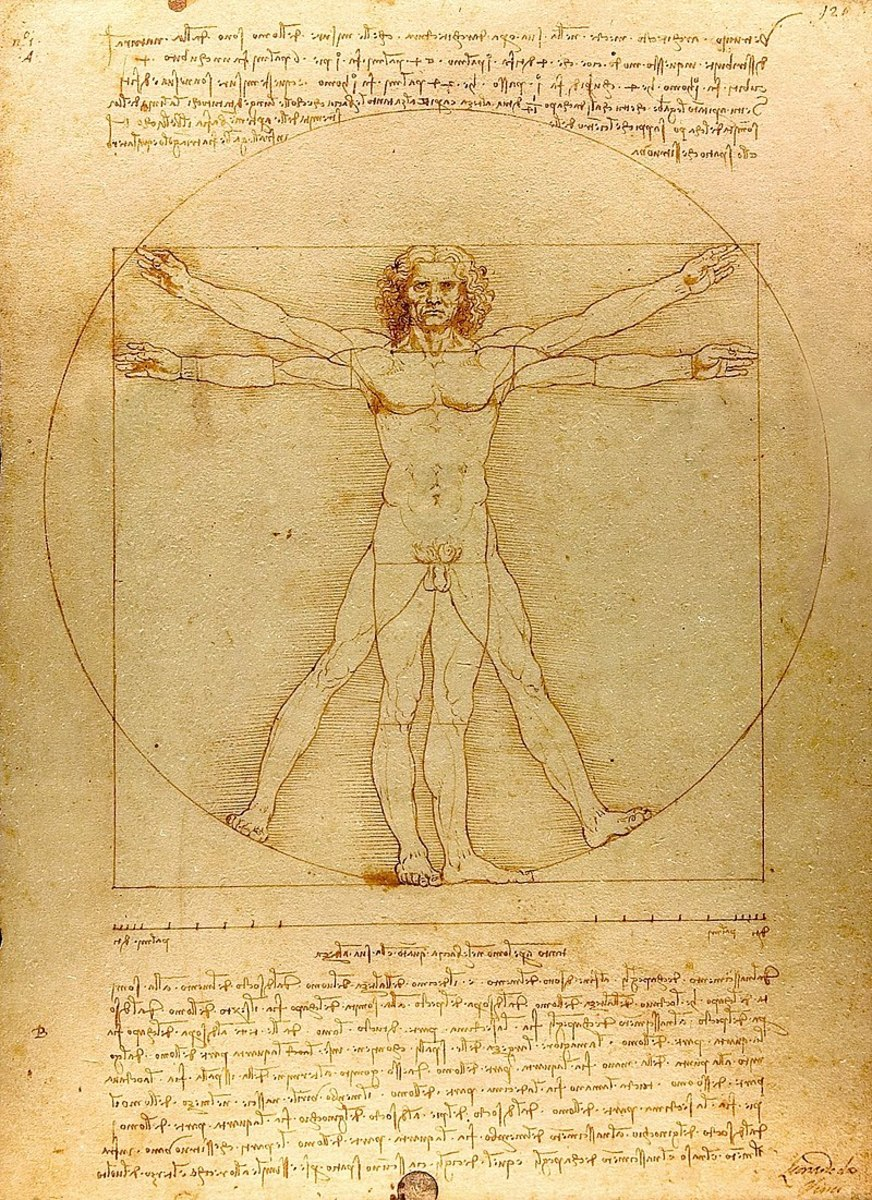 The Vitruvian Man c. 1485  Accademia Venice. The drawing represents ideal human body proportions. Its inscription in a square and a circle comes from a description by the ancient Roman architect Vitruvius in Book III of his treatise De architectura.