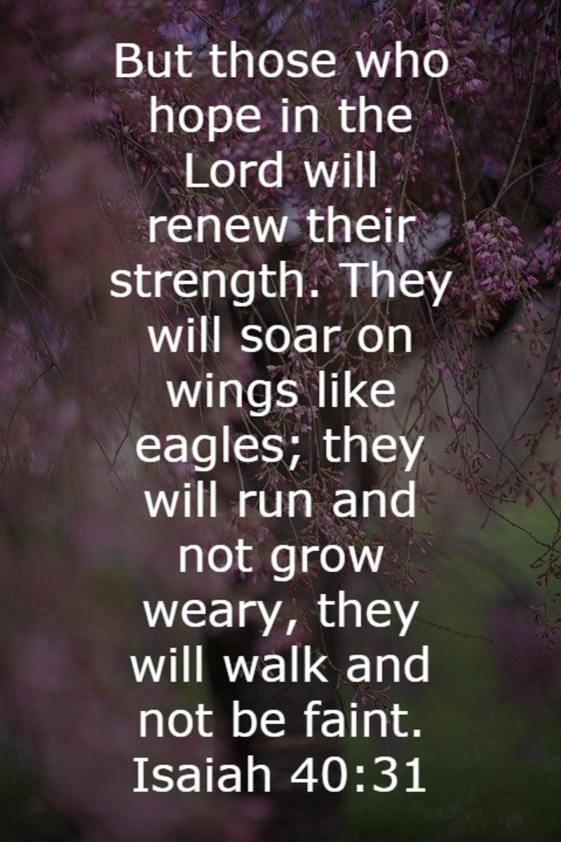 Those who hope in the Lord will have their strength renewed