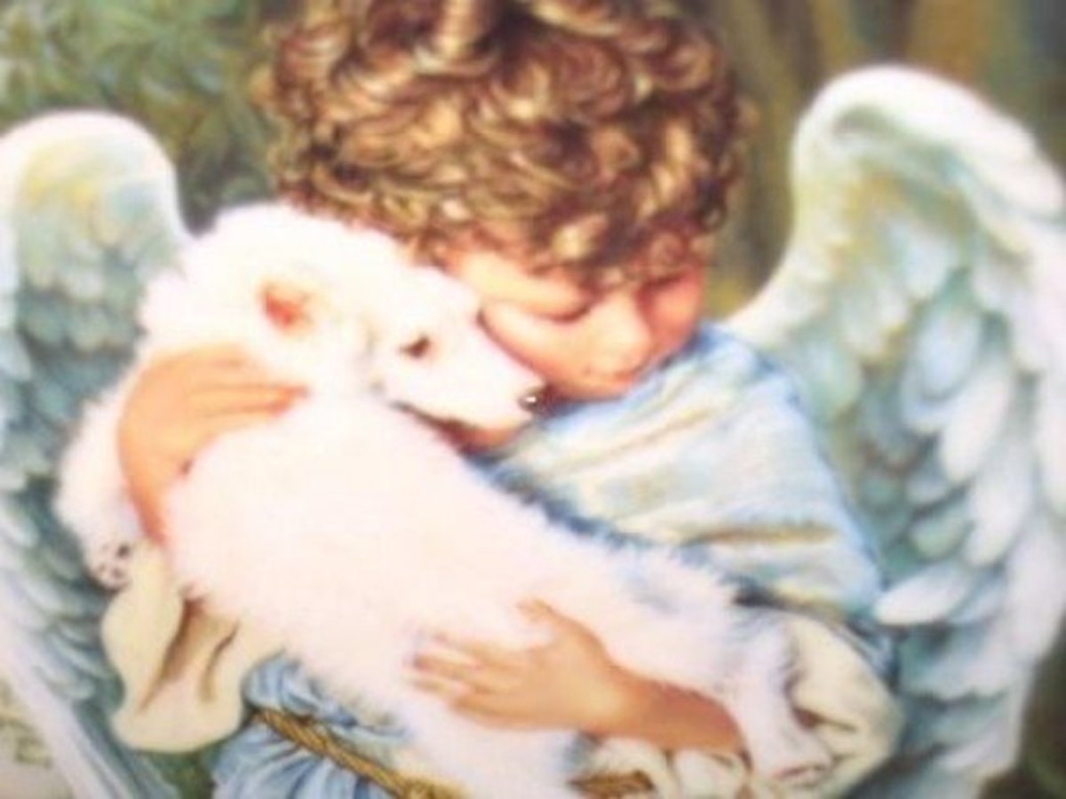 """""""God made all the creatures and gave them our love and our fear, to give sign, we and they are His children, one family here."""" ~Robert Browning"""