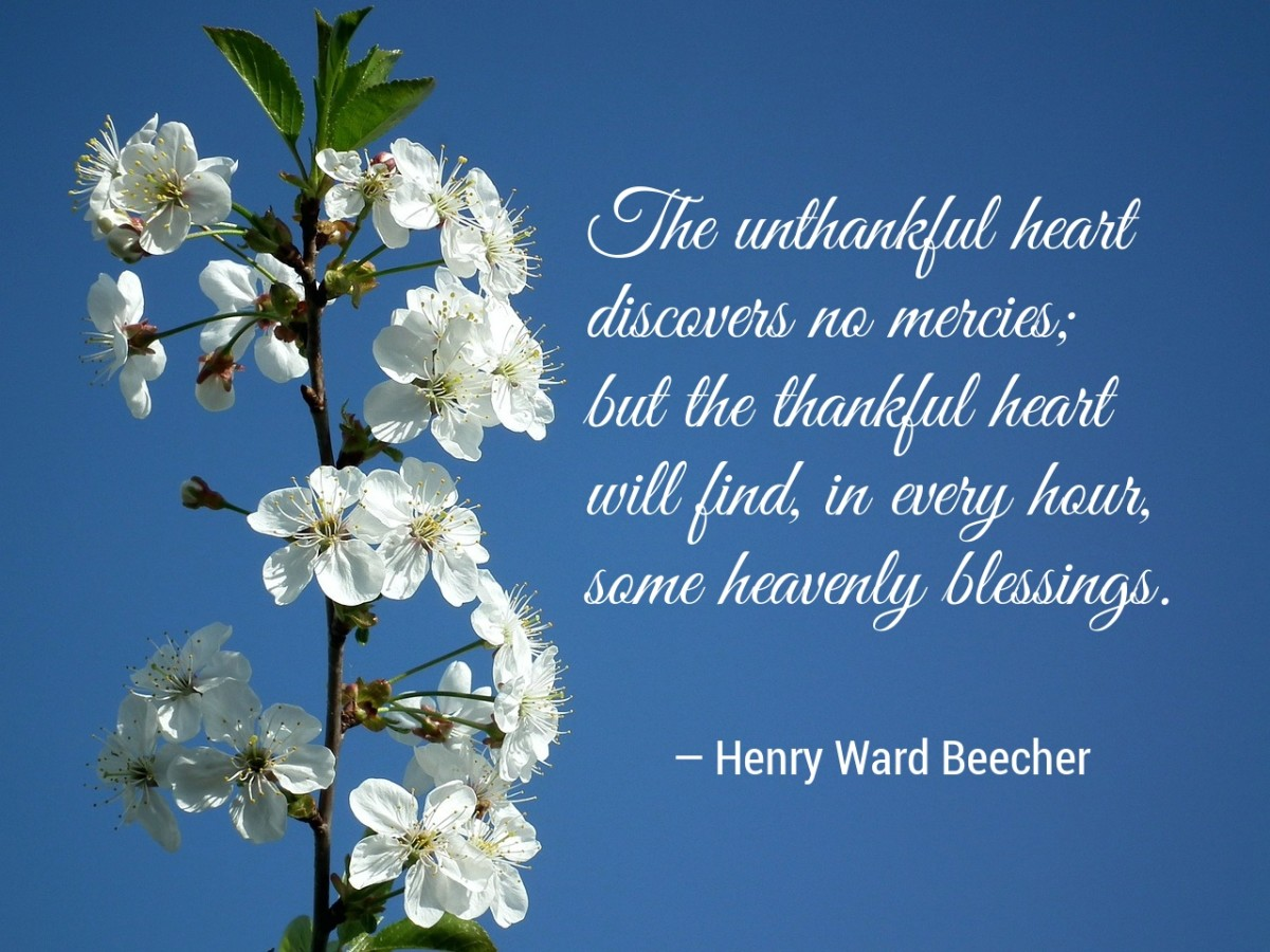 Beecher Blessings Quote. (Photo by AllNikArt. Text added.)
