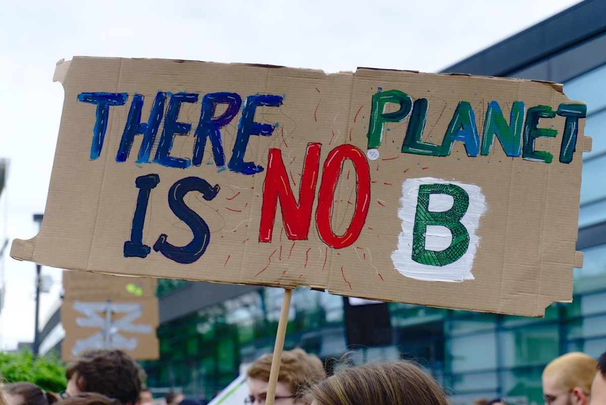 Fridays For Future Rally, Image by NiklasPntk from Pixabay