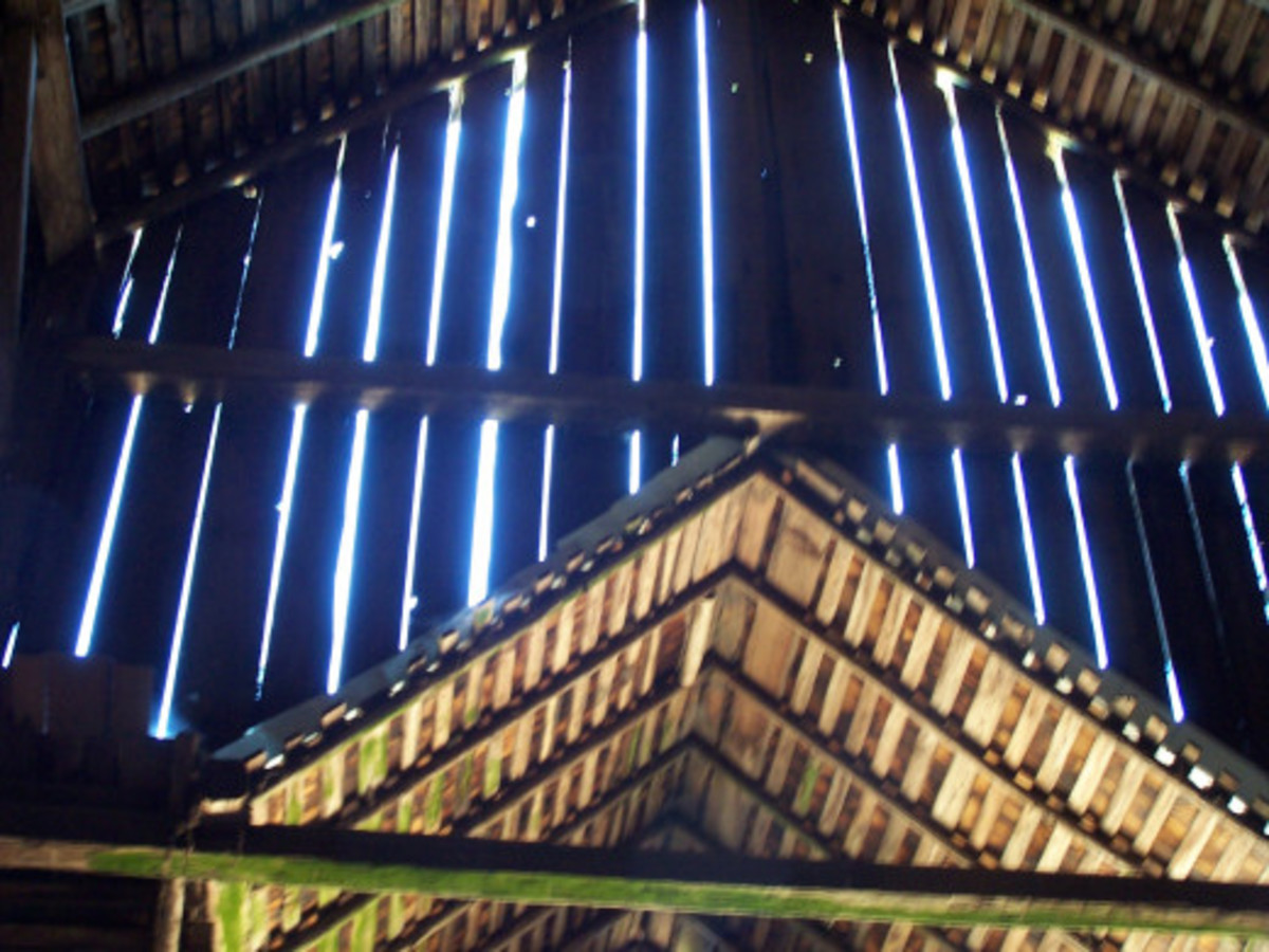 Looking up from inside the barn