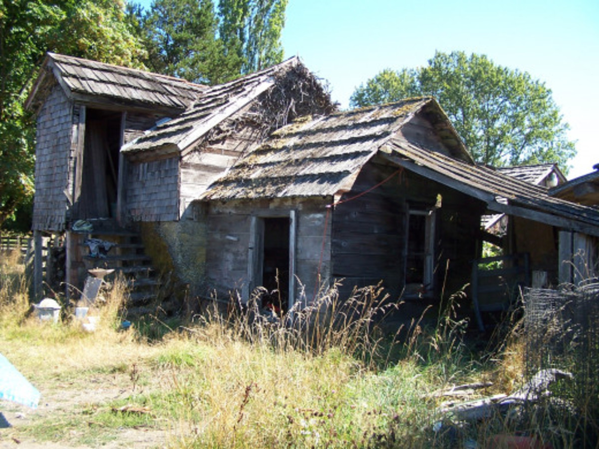 Neglected Outbuildings