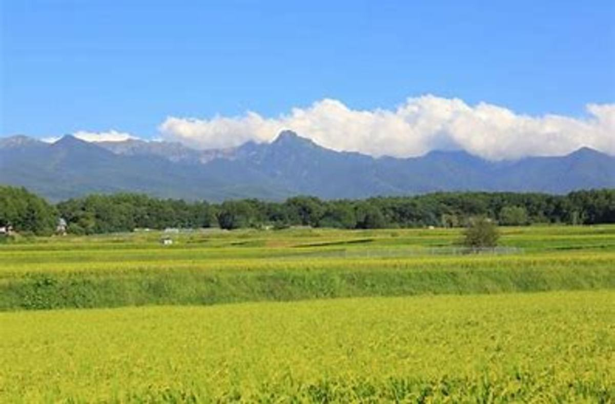 Chino City, Nagano, Japan  where our cottage was located