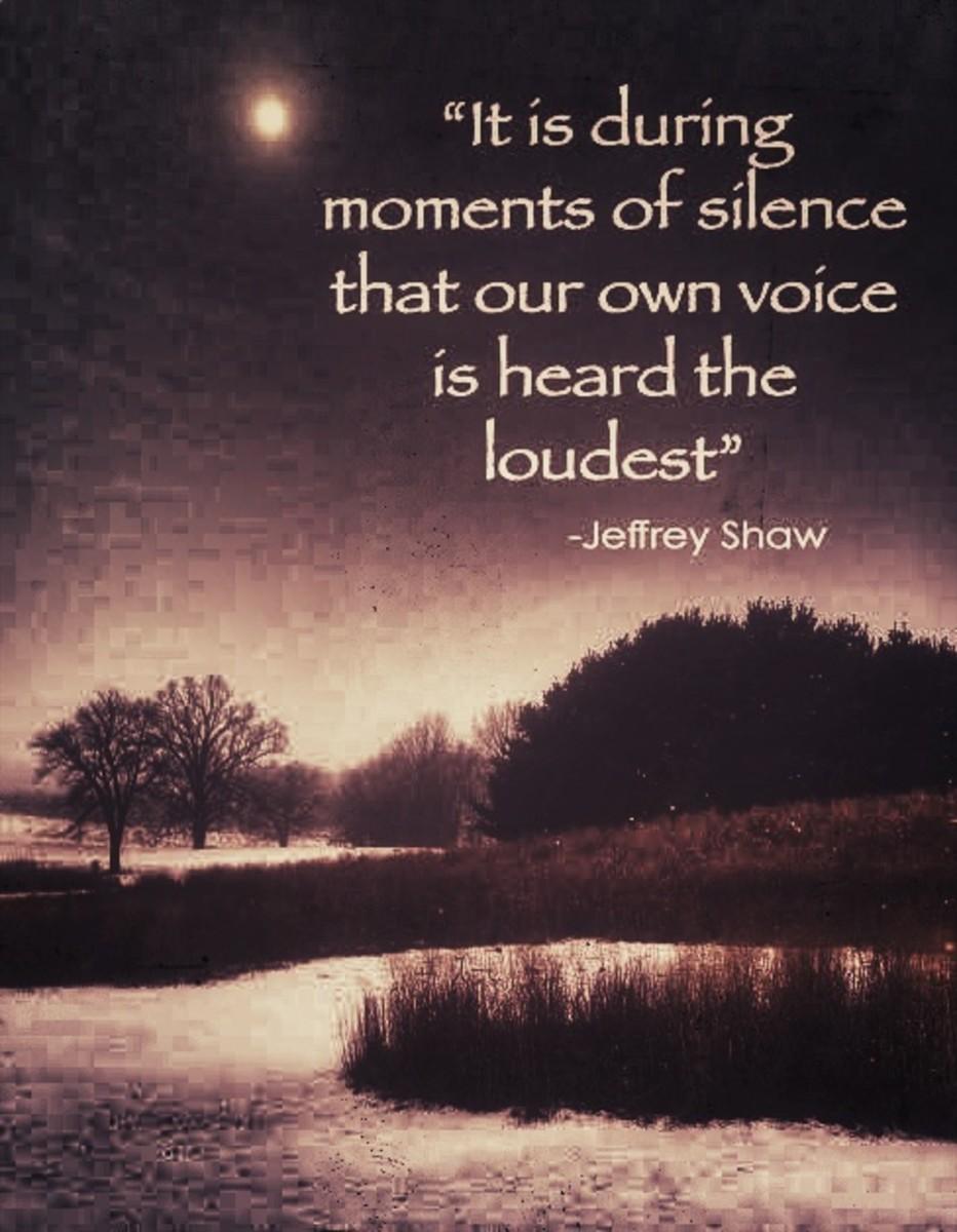 silent_introspection