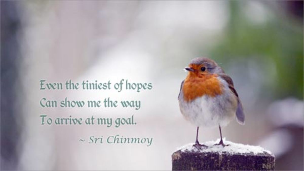 love-harmony-and-oneness-tuesdays-inspiration-5-to-bhattuc