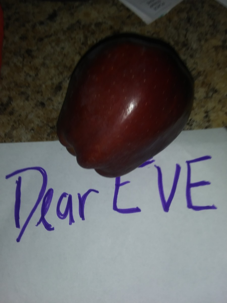 A letter from Adam : addressed to EVE