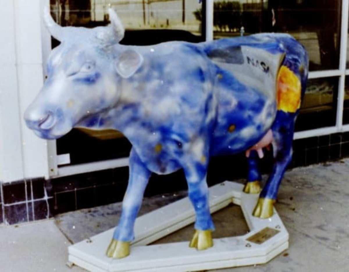 Cow Parade cutie