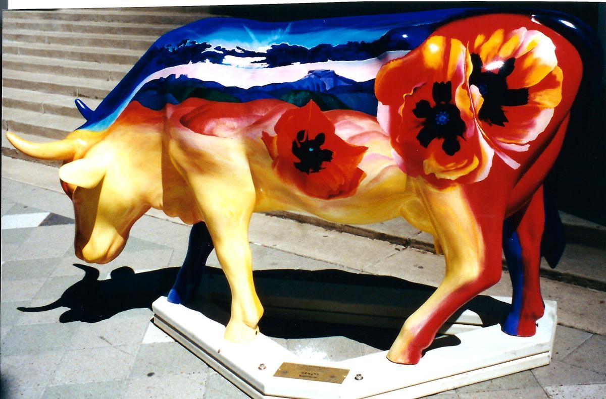Buena Vista Vaca