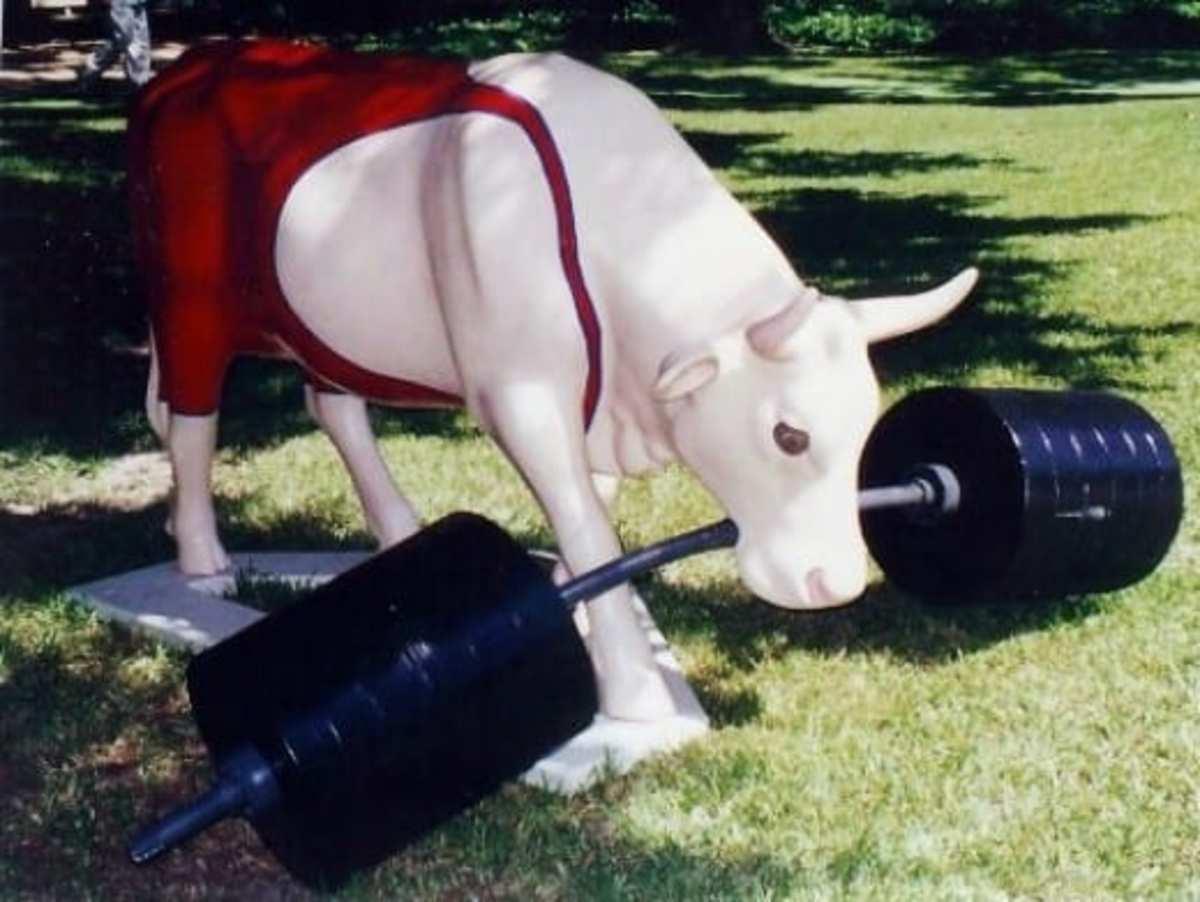 Mooscle Cow