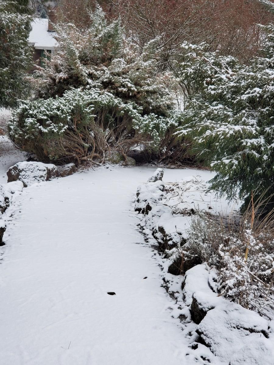Late winter snow in Spokane