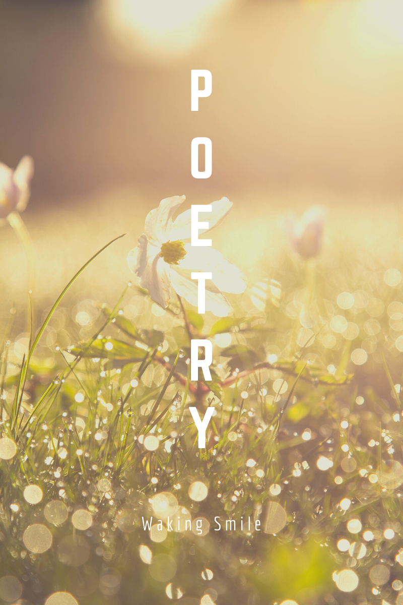 Poems about love from Mother of Movies