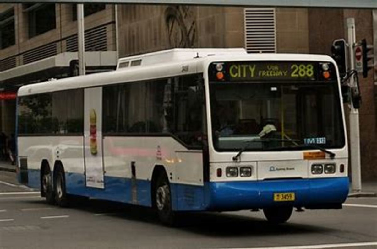 The Bus in Sydney