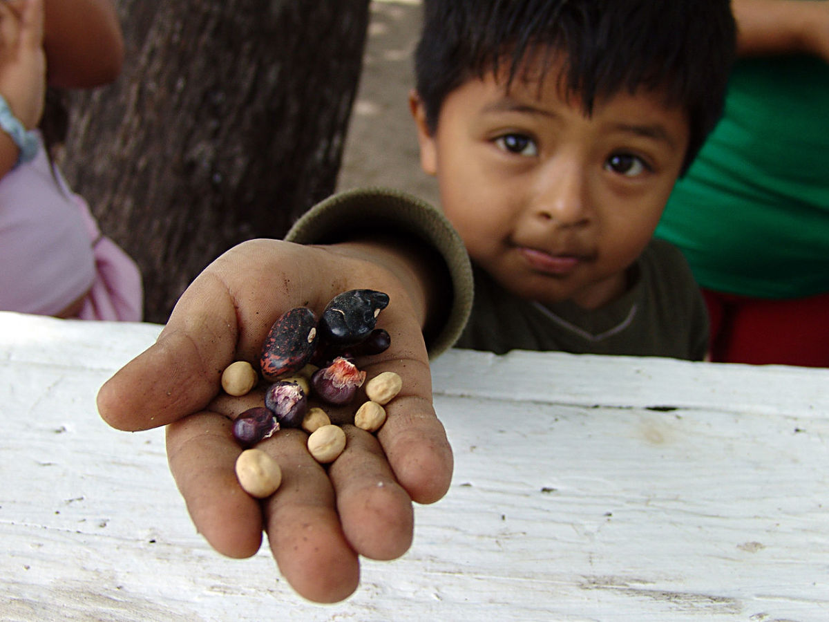 Your blessing can include this little boy and his farmworker family.