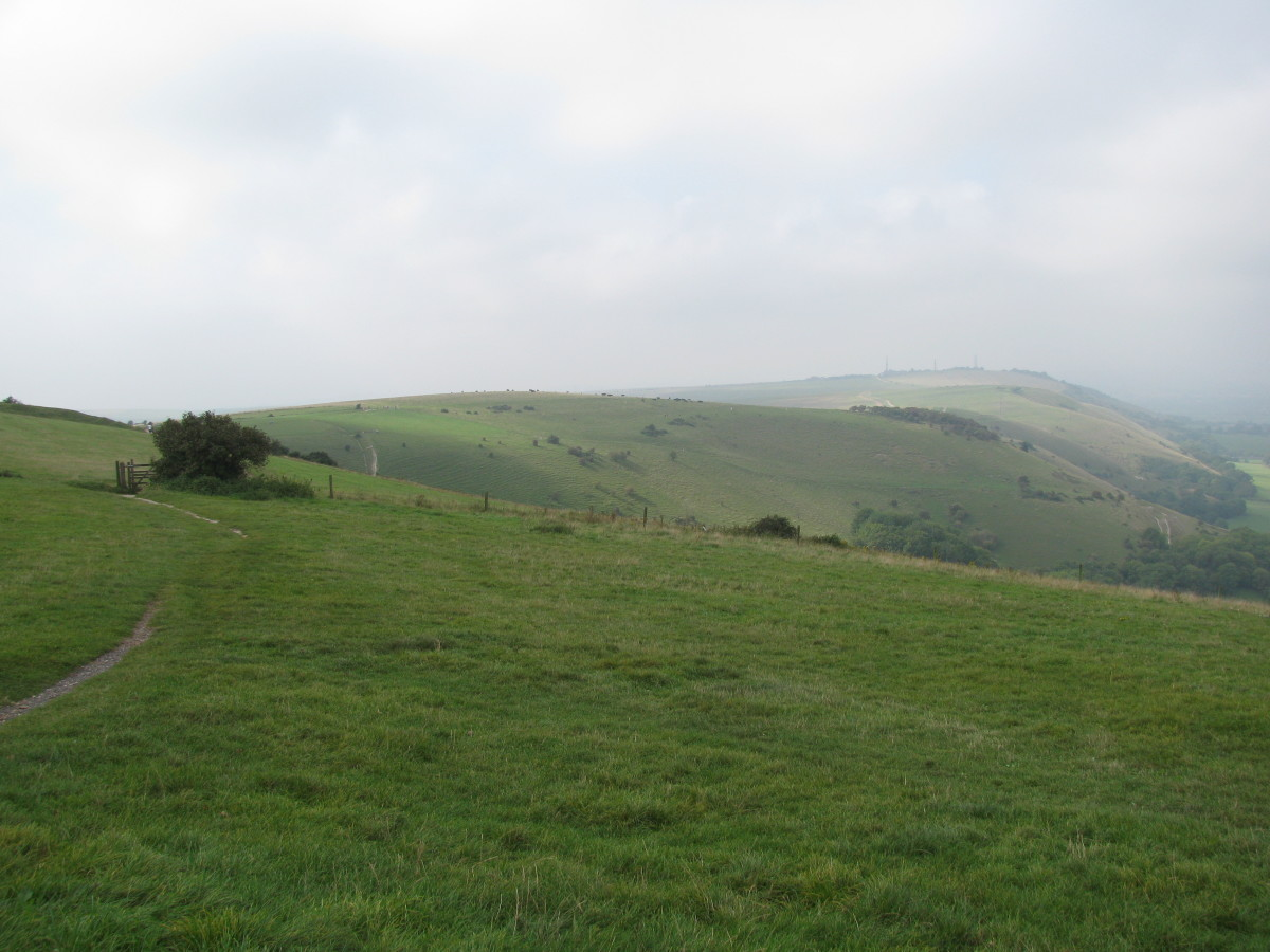 Part of the South Downs Way, towards start of the descent (sign-post by stile)
