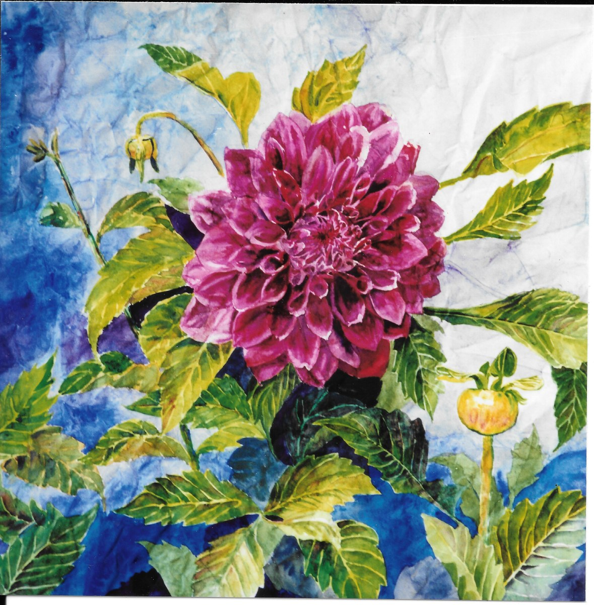 Watercolor Dahlia on wrinkled paper