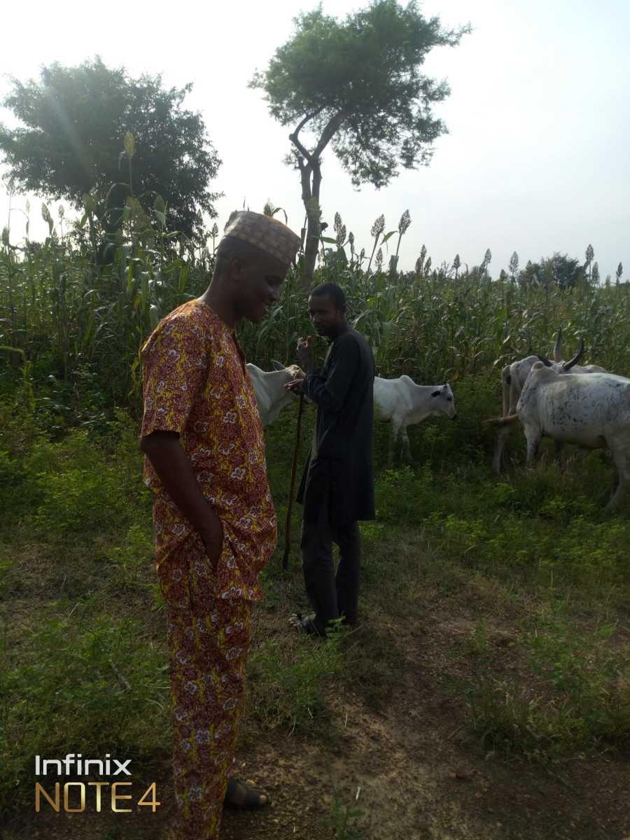 Jeje Gabriel, Katsina, Nigeria in the farm