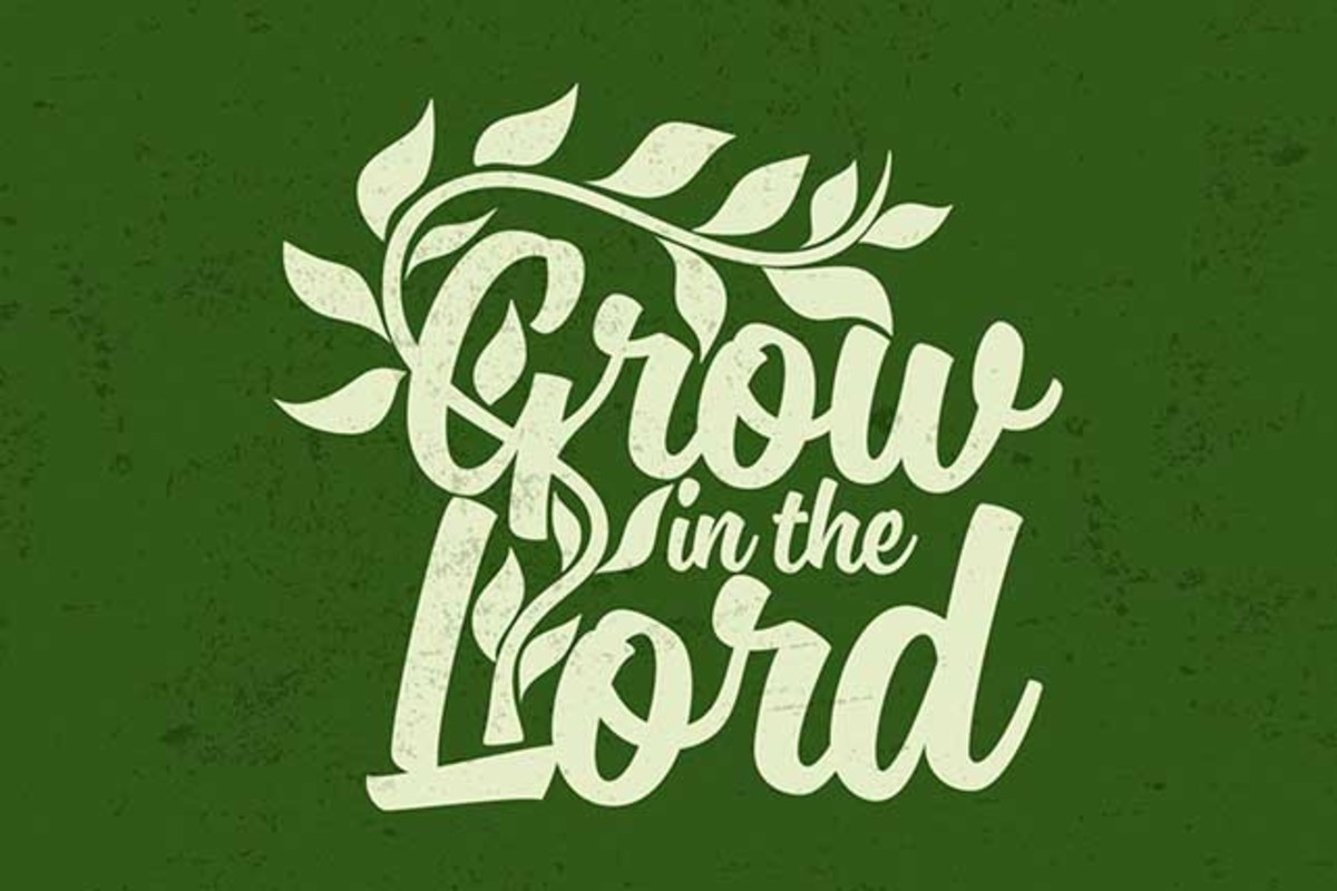 Grow in Him not church activities