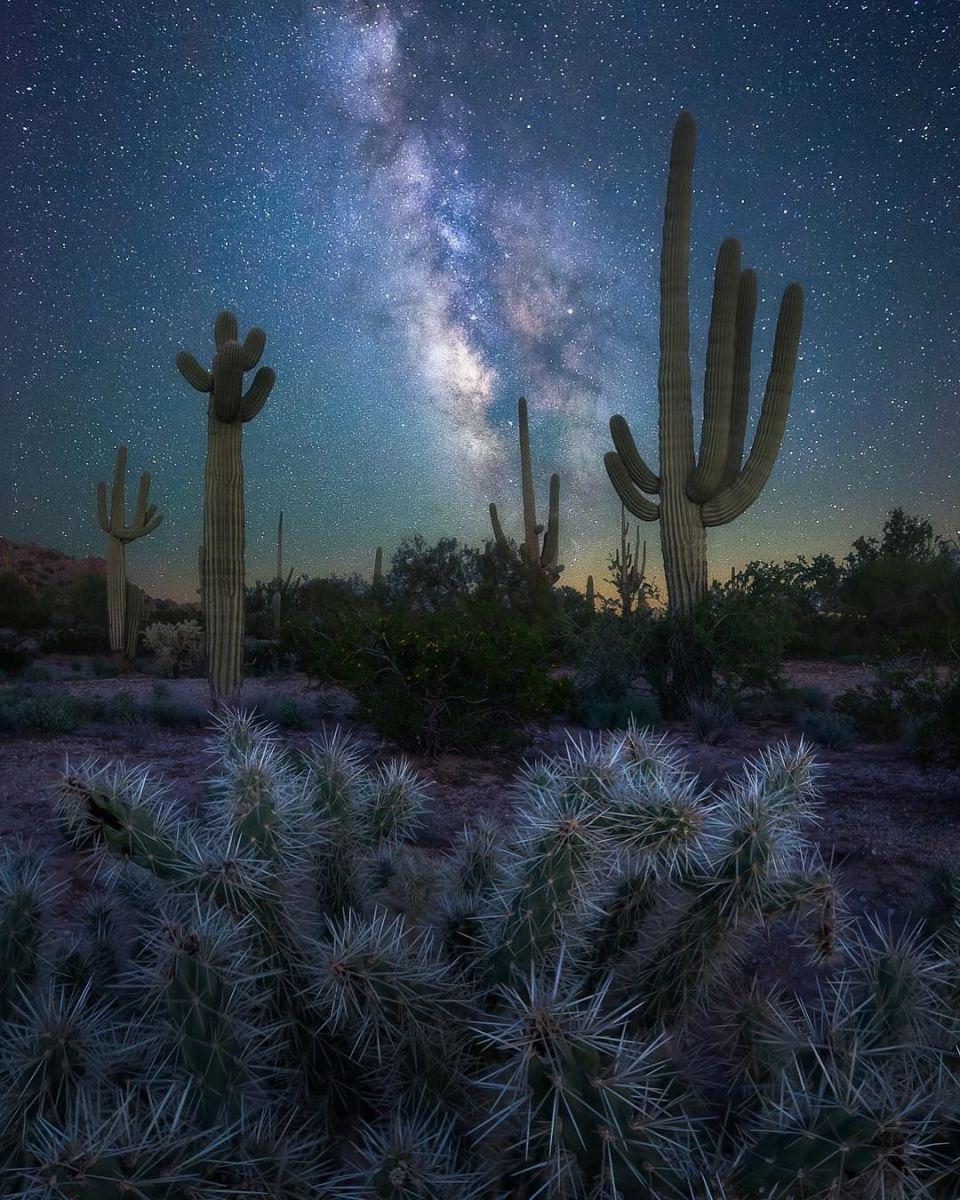 Night Scene of The Arizona Desert