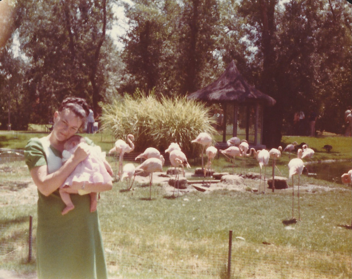 One of our first outings to the zoo in Madrid after the baby was born.