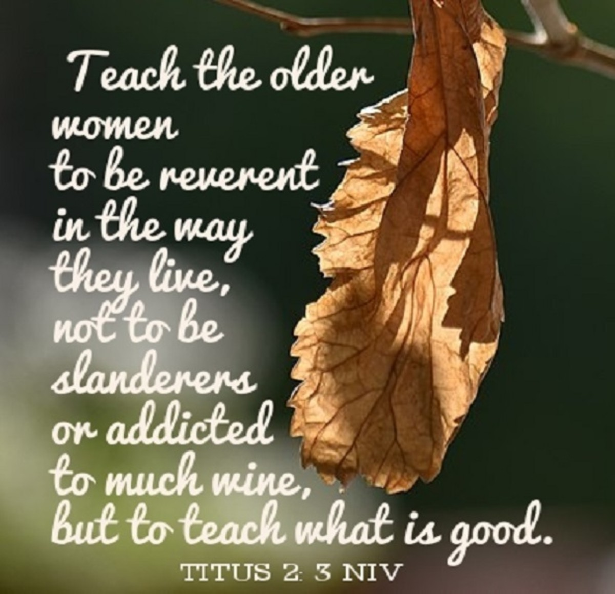 Teach the older women to be reverent in the way they live ...to teach what is good.