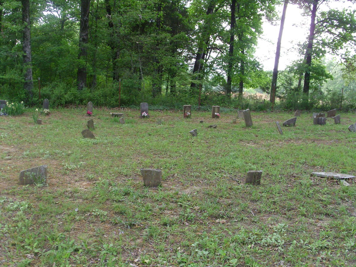 Mt. Zion Cemetery could use a few Johnston Buttercups. Some of the old markers are unnamed, but it is still an active cemetery and Johnstons are still being buried here.