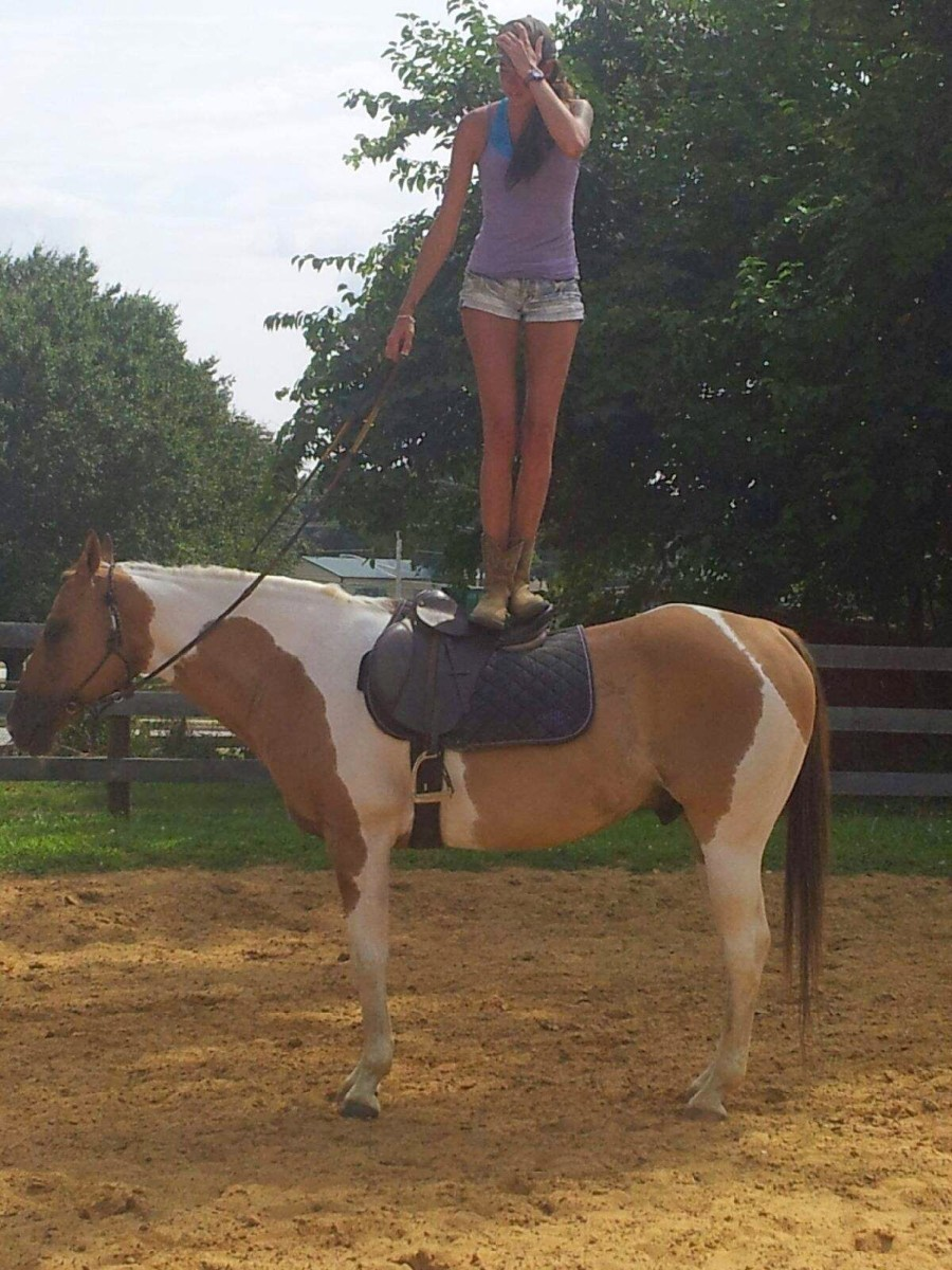 This is Chaps, the best lesson horse on earth. Don't try this at home. This is one of those do as I say not as I do kind of moments kids!