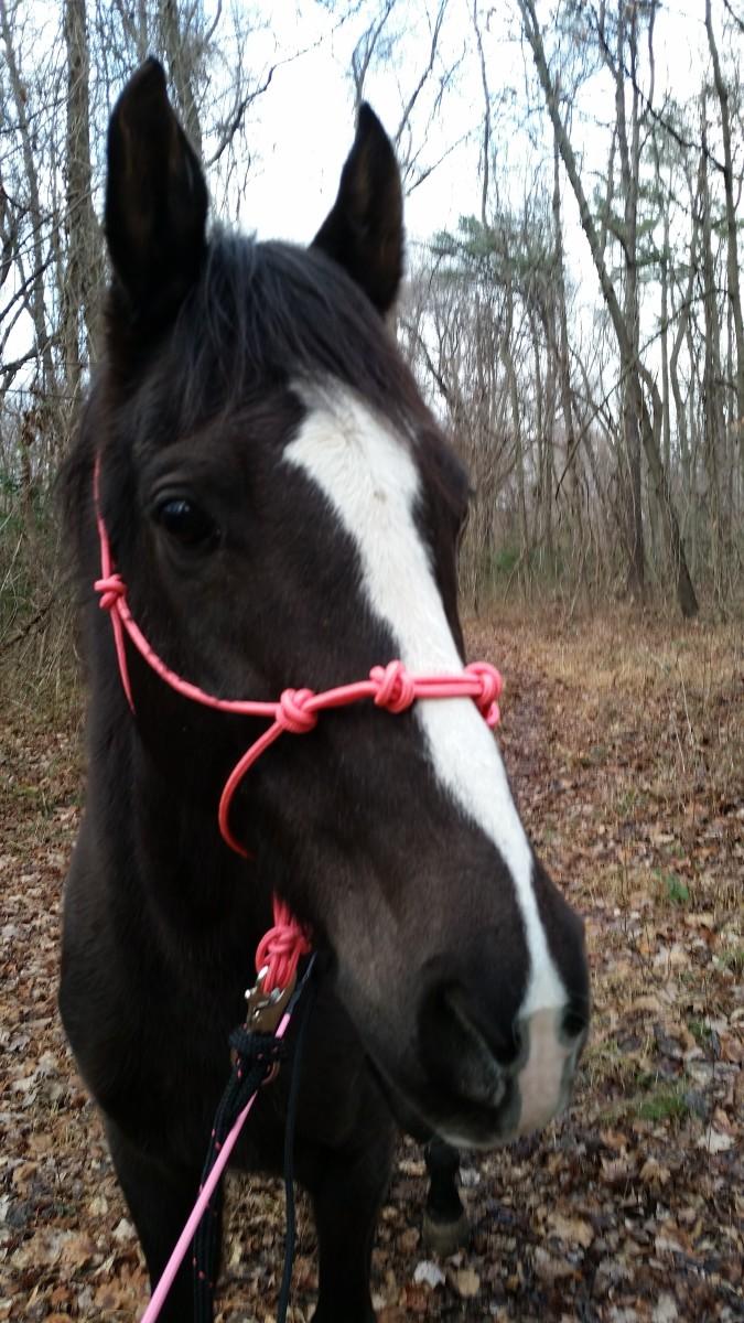 My girl,Zoe, pretty in pink!