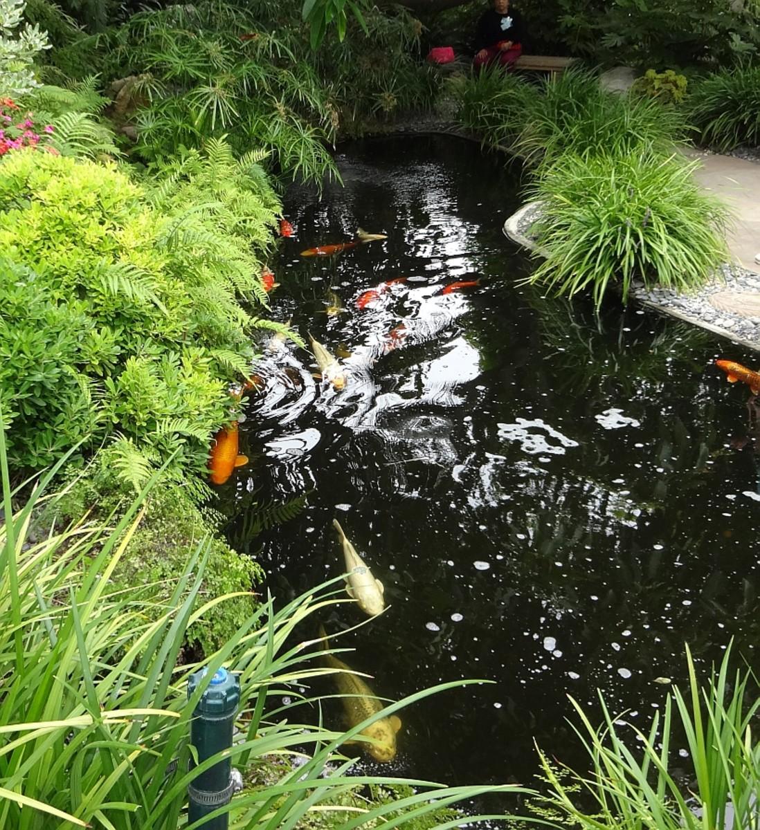 SRF Meditation Gardens, Encinitas CA