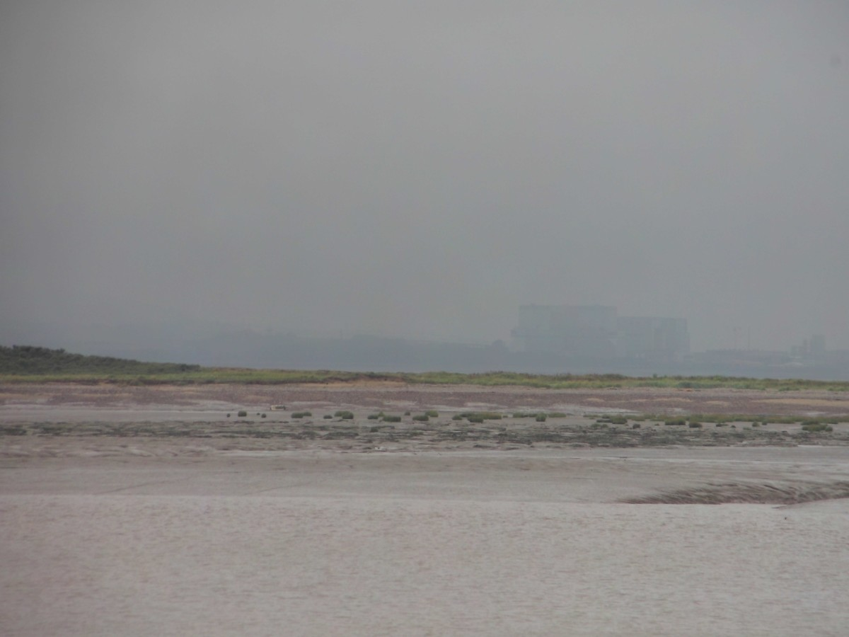 Nuclear Station Looming from the Mist
