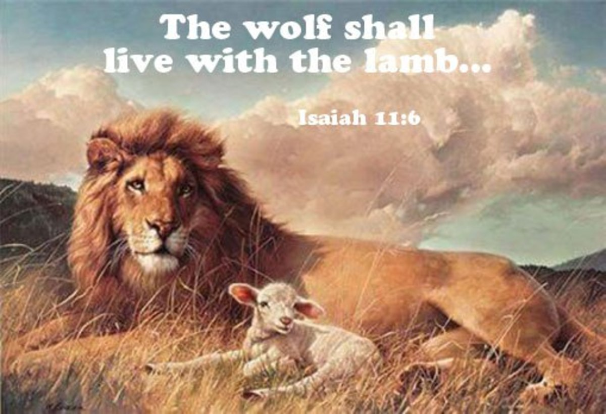 Isaiah 11:6 The wolf also shall dwell with the lamb, and the leopard shall lie down with the kid; and the calf and the young lion and the fatling together; and a little child shall lead them.