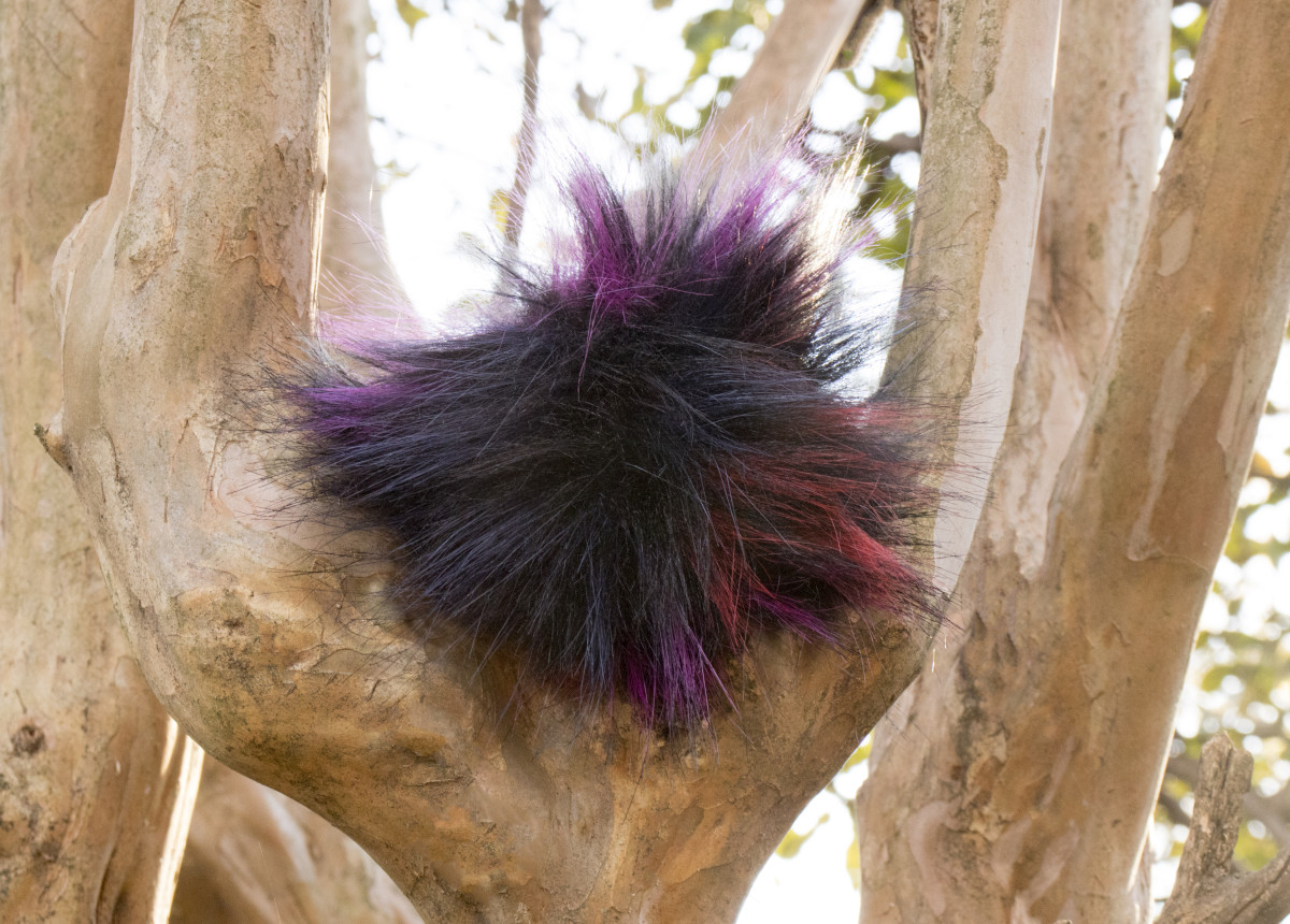 Tribbles occasionally like to climb trees. This keeps them away from most predators.