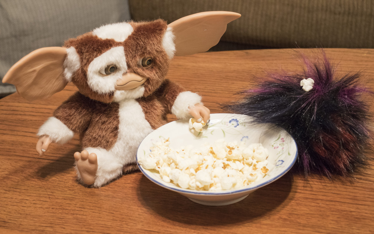 My Tribble, Punk, eats popcorn with Gizmo during movie night. Punk is messy and sometimes will get popcorn in his fur.