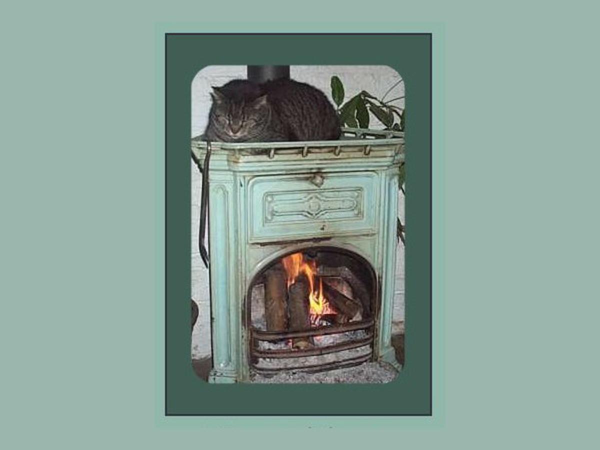 Tomcat Bram sleeping on the wood stove