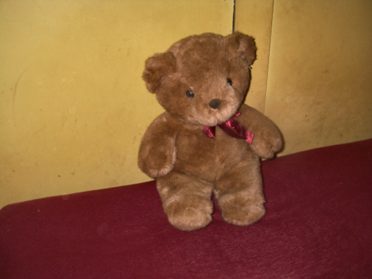 My Childhood Teddy