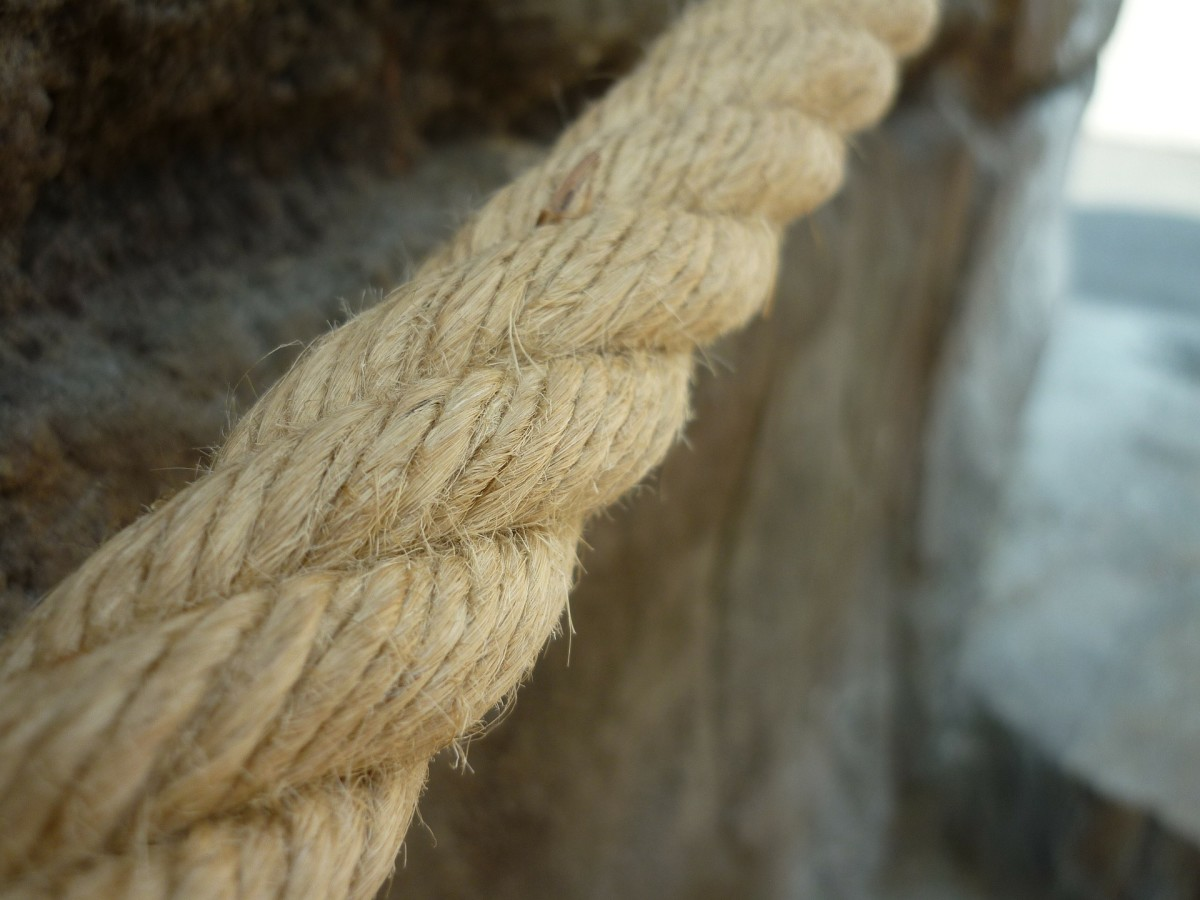 Aremon leaned his weight against the rope.