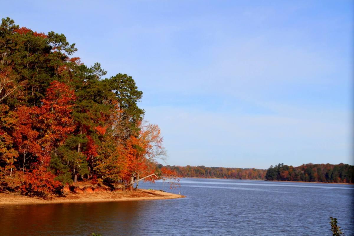 The PeeDee River in eastern South Carolina