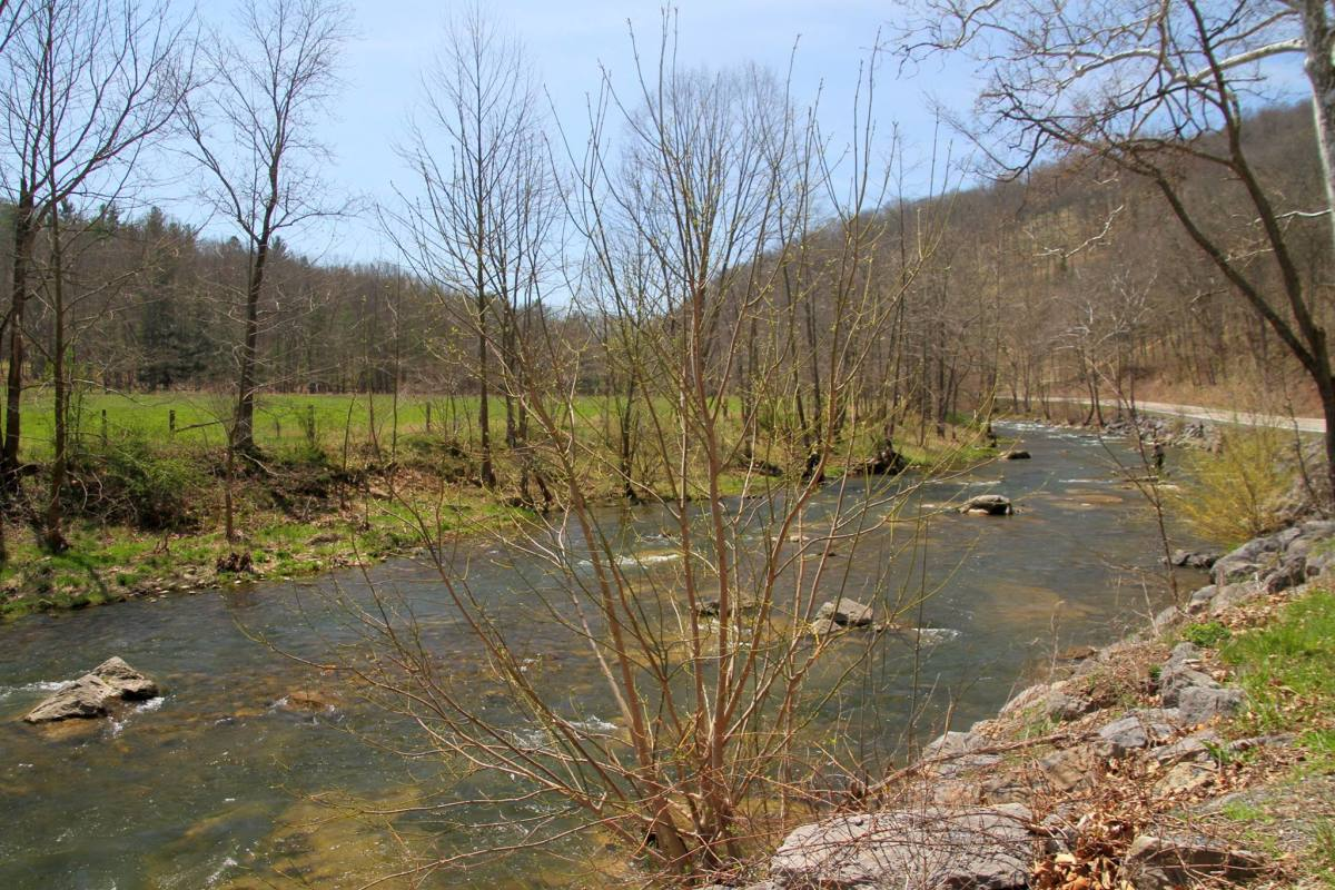The South Branch of the Potomac River in Highland County, VA