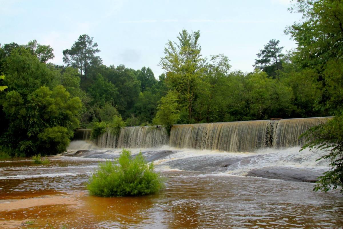 The Little River near Zebulon, NC