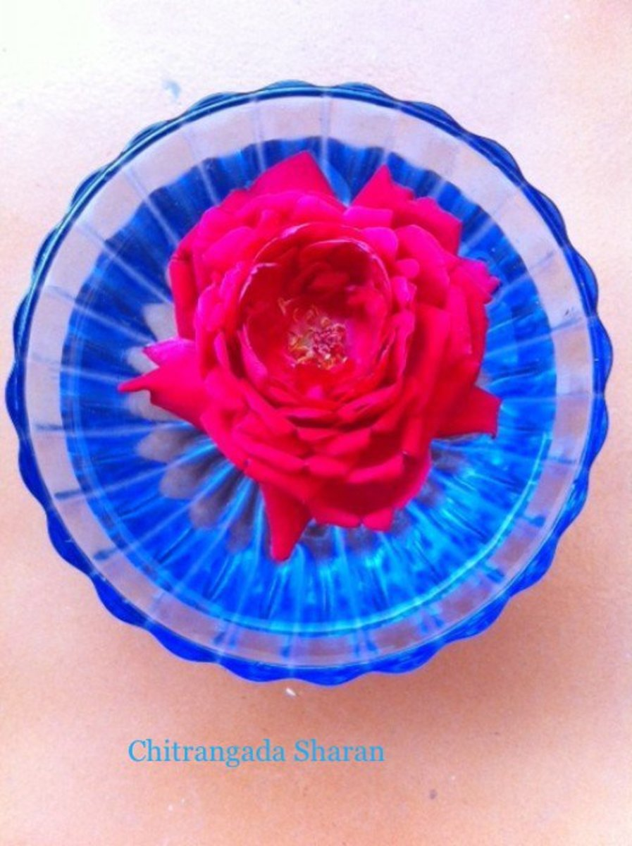 Red signifies Love, Energy and Power—Red Rose in a glass bowl